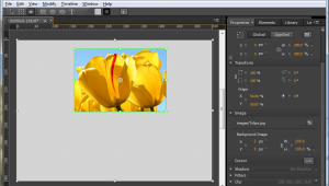 adobe-edge-clipping-tool-2