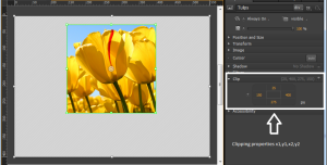 adobe-edge-clipping-tool-3