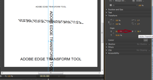 adobe-edge-transform-tool-5
